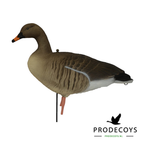 bean goose pink footed goose decoys sentry